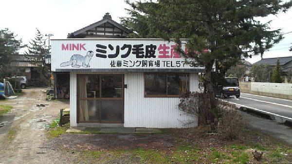 佐藤ミンク