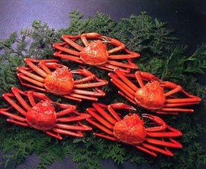 小針水産紅ズワイ蟹セット-1